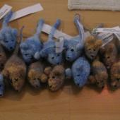 Felted Catnip Mice, knit by Worsted Knitt